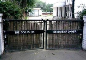 The dog is ok, beware of the owner!